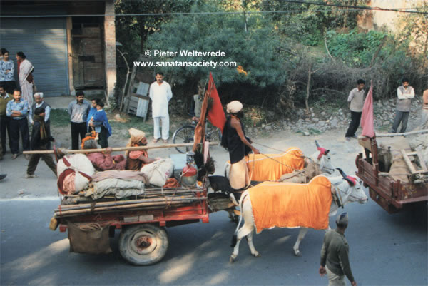 Various modes of Transportation in India