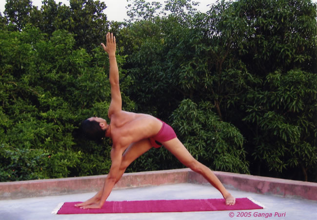 Yoga Asanas : the yoga of Asana by Ganga Puri